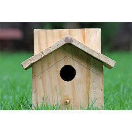 Wooden Sparrow Bird House